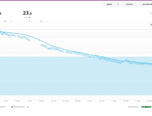 Wie habe ich im Jahr 2013 über 20kg abnehmen können?