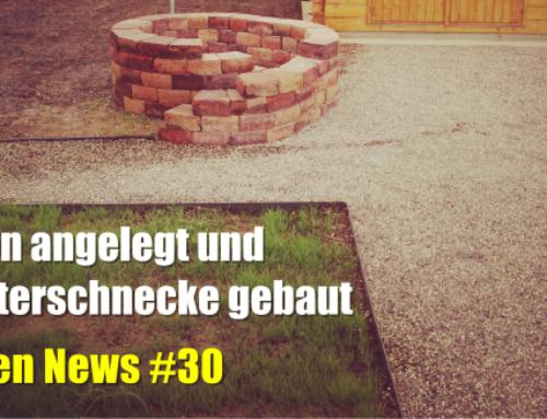 Rasen angelegt und Kräuterschnecke gebaut – Garten News #30